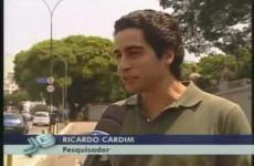 Árvores nomeiam locais de São Paulo - Ricardo Cardim