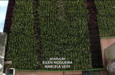 A polêmica das paredes verdes e compensação ambiental em São Paulo_Ricardo Cardim