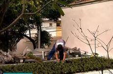 Telhados Verdes com Ricardo Cardim