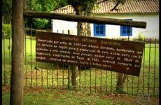 Pomar mais antigo de São Paulo com Ricardo Cardim
