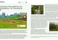 """4-Reintroduzindo-a-Mata-Atlântica-nas-cidades-brasileiras-–-As-""""Florestas-de-Bolso®""""-_-GBC-Brasil-(2017-02-02-23-47-52)"""